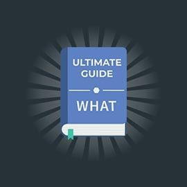 The Ultimate Guide to Software Testing Part 3: What | Global App Testing