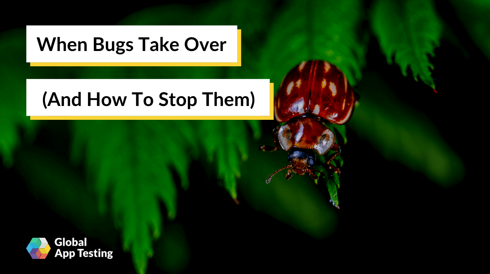When Bugs Take Over (And How To Stop Them)